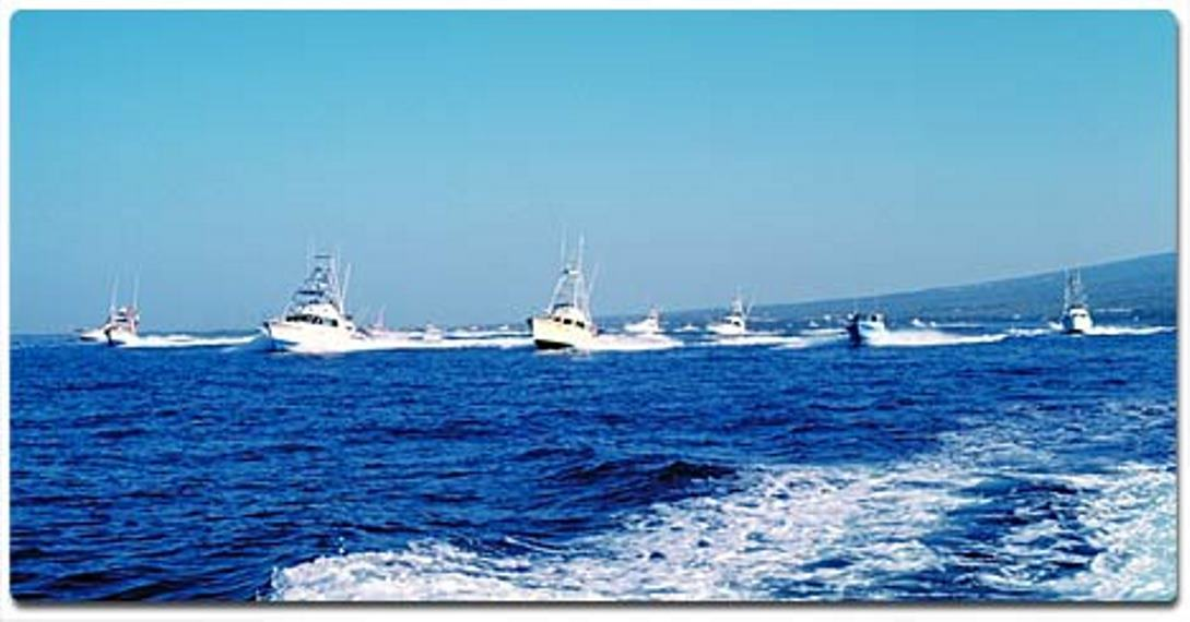 Honolulu fishing charters deep sea fishing fishing trips for Honolulu fishing charters